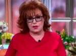 """'The View' host on what police should do to stop would-be killers: """"Shoot the gun in the air as a warning"""""""