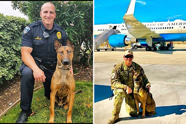 Officer Down: Bakersfield PD K9 murdered after being shot by suspect in a stolen vehicle