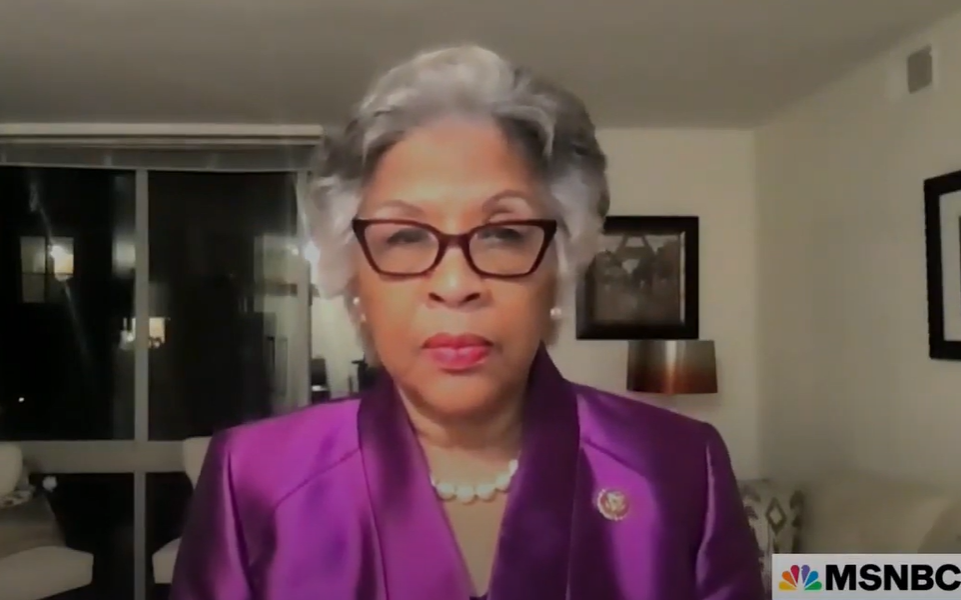 Black Caucus chair Rep. Joyce Beatty: Police could 'shoot in the air' to stop would-be killers