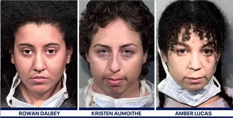 Three women arrested for smearing pig's blood on Chauvin witness' former home - Screenshot courtesy of Fox News