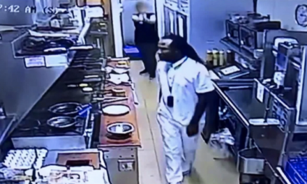 Watch: Armed waitress with concealed carry permit saves co-worker from beating