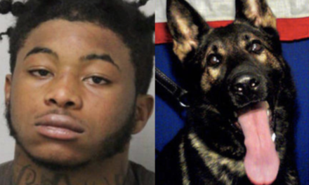 Carjacking suspect charged with killing police K9