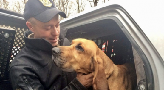 Connecticut State Police Bloodhound Found After Missing 36 Hours