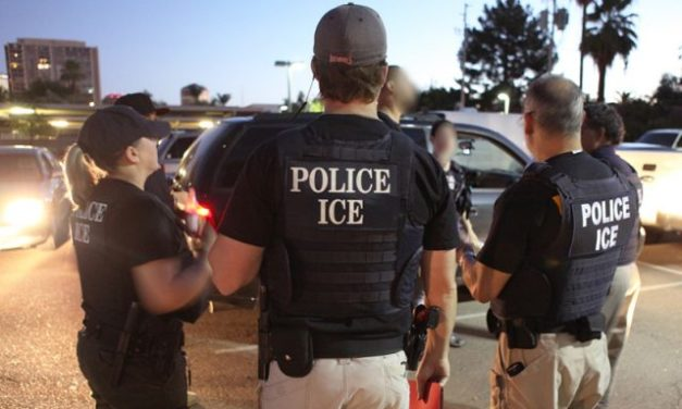Wikileaks Doxes 9,243 ICE Agents