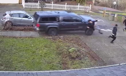 VIDEO: Police search for truck that mowed people down on sidewalk