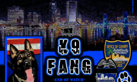 K-9 Fang shot and killed trying to apprehend felon