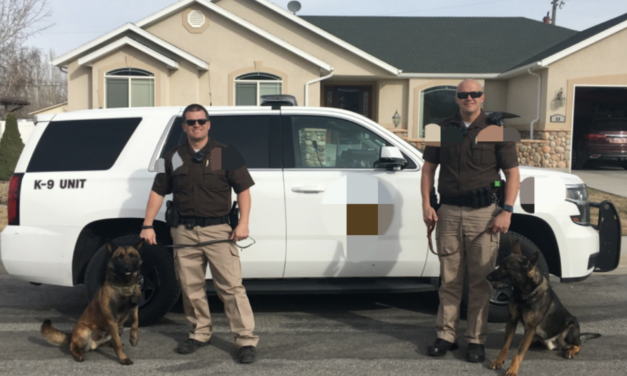 Unique Brotherhood – True Blood and K9 Blue