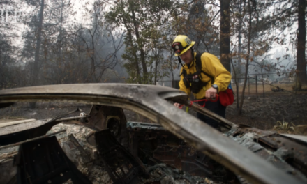 More than 90 police and firefighters have lost homes in massive California wildfire