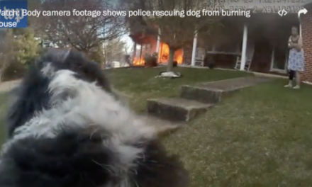 Officer Rescues Neighbors and Pet Dog From Residential Fire