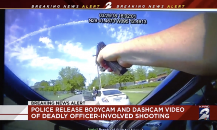Video Shows Man With Stolen Handgun Shot by Officer